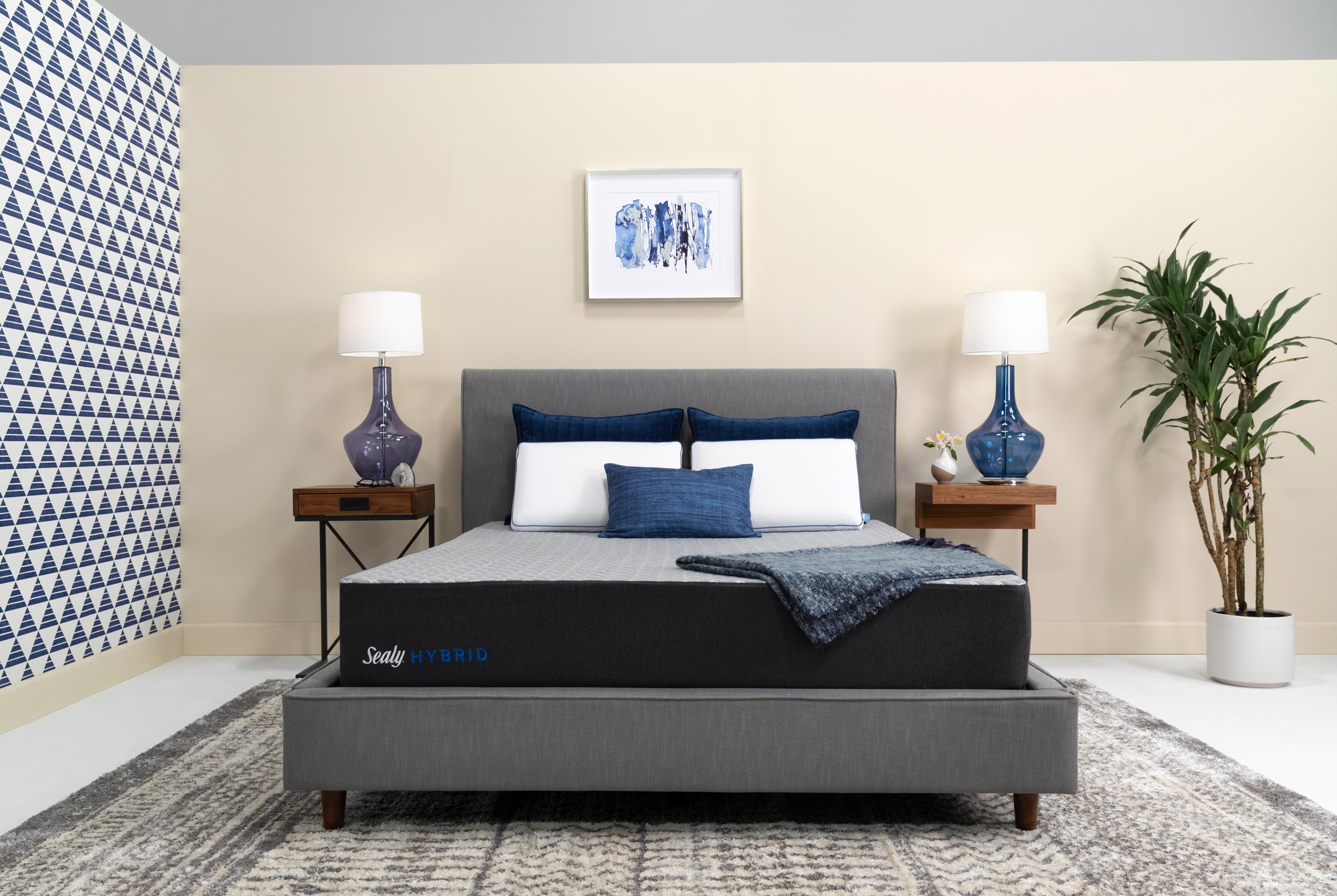 Sealy Lifestyle 10 Inch Quot Bed In A Box Quot
